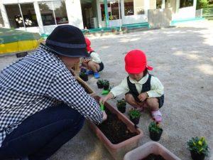 <p>佐賀市建設部緑化推進様からビオラの苗を頂きました。<br />佐賀市は公共的な施設の緑化の推進と、花づくりを…</p>