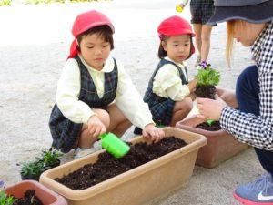 <p>『始めに苗を入れる穴をあけてね。』<br />このくらいかな?・・・<br />あっ、私と同じ色のビオラを植えるんだ~</p>