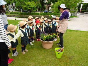 <p>元気いっぱい咲いてね!<br />今年も佐賀県立佐賀城公園管理事務所の方に声を掛けいていただき、<br />…</p>